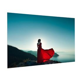 View a large image of the Da-Lite FC6H65X116 FullVision Fixed Frame (HD Pro 0.6, 16:9, 133 Inch) here.