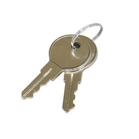 View a larger image of the Middle Atlantic Front Door Keys (Pair) SFD-KEY here.